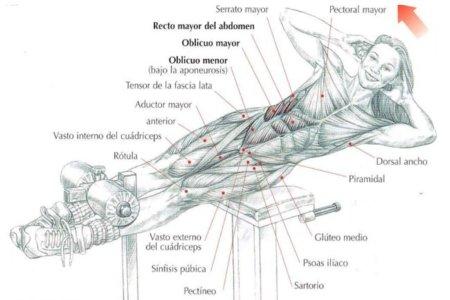 flexion-lateral