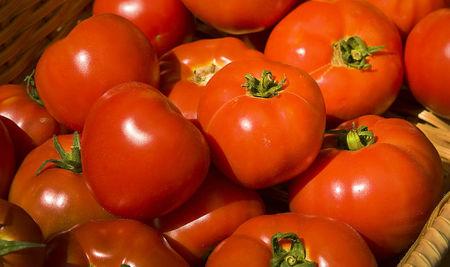 Los tomates mutantes o por qué los tomates no saben a nada