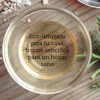 Las fórmulas caseras para una limpieza ecológica en casa ahora recogidas en un libro: Green & Clean