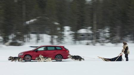 ¡León Cupra ST vs. un trineo jalado por seis perros! ¿Quién ganará?