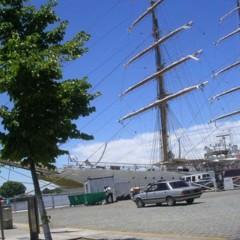 Foto 8 de 15 de la galería puerto-madero-buenos-aires en Diario del Viajero