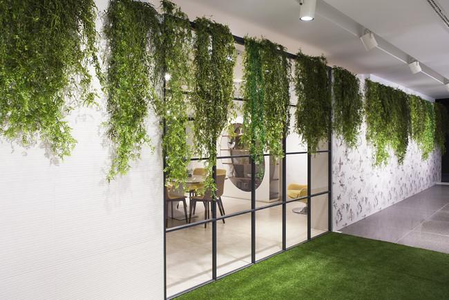 C Greenarea Decoracion Vegetal Plantas Colgantes Esmalglass