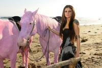 Pink le da cera a Selena Gómez por ir por la vida pintando caballos de color rosa