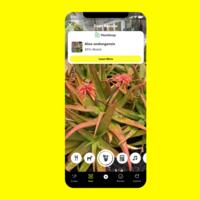 Snapchat ahora resuelve ecuaciones matemáticas, reconoce razas de perros y hasta plantas con su nuevo escáner más inteligente