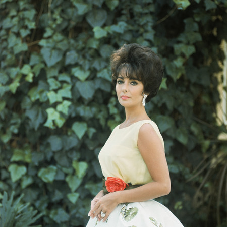 Dior Denver Exhibition Elizabeth Taylor Wearing Soiree A Rio Dress