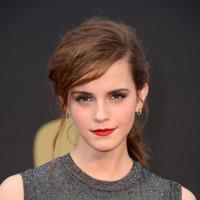 Emma Watson de Vera Wang en los Oscar 2014, esta vez no