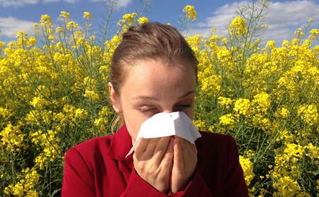 Cinco aplicaciones Android gratis para alérgicos al polen