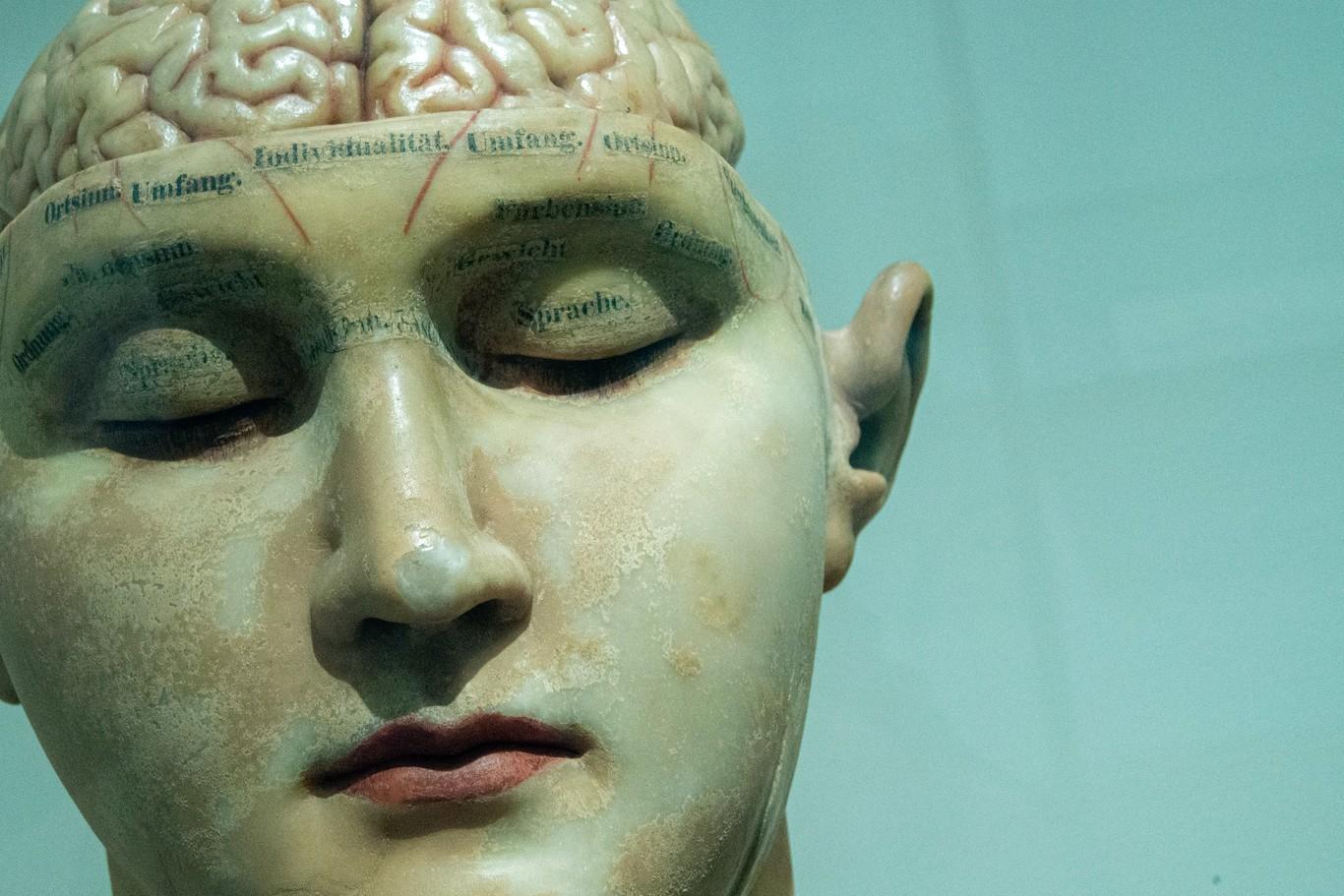 ¿Cuánta información puede llegar a almacenar nuestro cerebro?