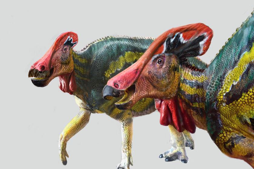 """El dinosaurio """"parlanchín"""": una nueva especie descubierta en México tenía una """"trompeta interna"""" y lucía..."""