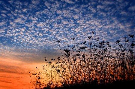 Las pymes baleares contra el CO2