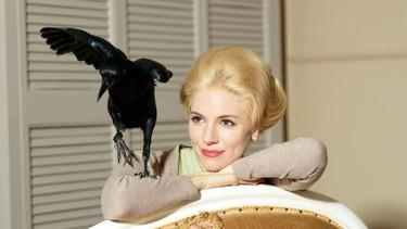 Sienna Miller luce moñaco y un cuervo de mascota... ¿qué parte me he perdido?