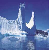 Bosques en Groenlandia