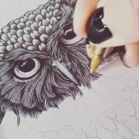 Cuando un bolígrafo es la mejor herramienta para crear increíbles dibujos basados en líneas