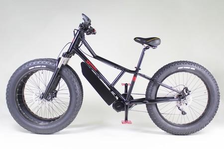 Rungu Bici Electrica Tres Ruedas 3