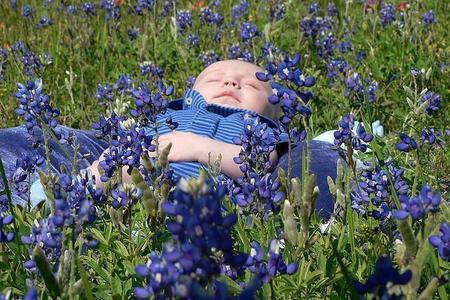 La foto de tu bebé: primavera azul