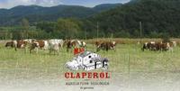 Apadrinar una vaca y obtener beneficios en especias ecológicas