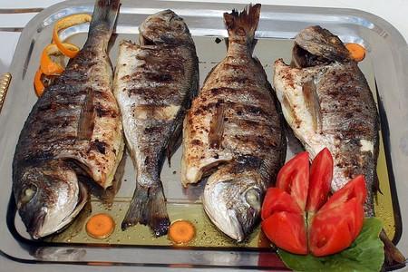 Fish 2081768 480