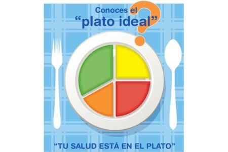 """El """"plato ideal"""" para controlar el peso y combatir la obesidad"""