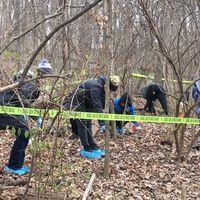 Estos científicos están enterrando cadáveres humanos en medio del bosque para ver cómo afecta su descomposición a las plantas cercanas