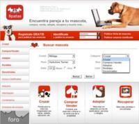 8patas, buscando parejas a los perros a través de internet