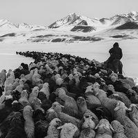 Kevin Faingnaert es el ganador del '2017 Zeiss Photography Award' gracias a sus fotos de las Islas Feroe