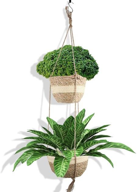 https://www.amazon.es/Colgantes-Maceteros-Decoraci%C3%B3n-Dormitorios-Familiares/dp/B08PKCSNP9/ref=sr_1_10?__mk_es_ES=%C3%85M%C3%85%C5%BD%C3%95%C3%91&dchild=1&keywords=plantas+exterior&qid=1617176160&sr=8-10