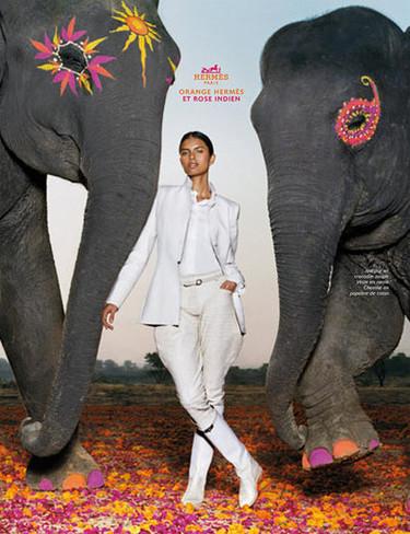 La campaña de Hermès, ¡viva lo exótico!