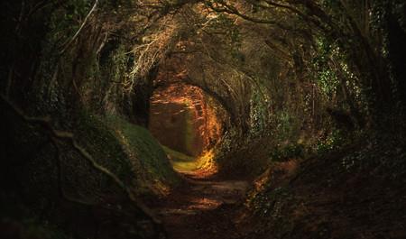 Magia En El Mundo De Tolkien El Senor De Los Anillos