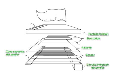 Estructura del sensor