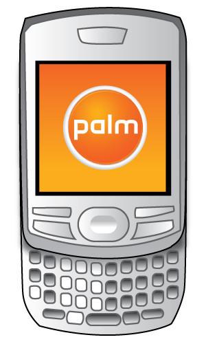 Palm dispuesta a renacer de sus cenizas