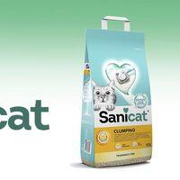 La arena para gatos más vendida en Amazon hoy es todavía más barata: llévatela por menos de 6 euros con envío gratis