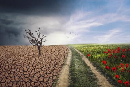 Camino A Ninguna Parte Comprar Todos Un Aire Acondicionado Para Aliviar En Casa El Calor Del Cambio Climatico 3