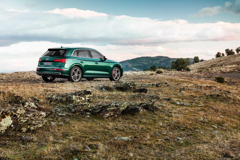 Foto de Audi SQ5 TDI 2019 (18/19)