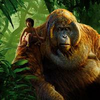 Oscar 2017 | 'El libro de la selva' tiene los mejores efectos visuales y 'La La Land' el mejor diseño de producción