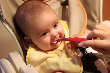 La comida para bebés hecha en casa tiene más y mejores beneficios que la comprada