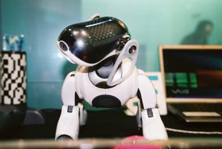 Los perros robot también son buenos para combatir la soledad