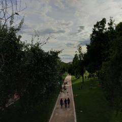Foto 13 de 57 de la galería fotos-tomadas-con-el-xiaomi-redmi-s2 en Xataka Android