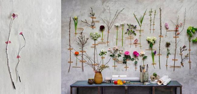 Originales ideas de c mo colgar tus flores y plantas en la for Ideas para colgar plantas