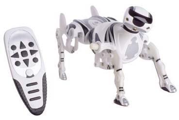 Robopet: la mascota del Robosapiens