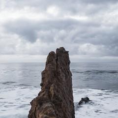 Foto 6 de 17 de la galería fondos-del-mar en Xataka Android
