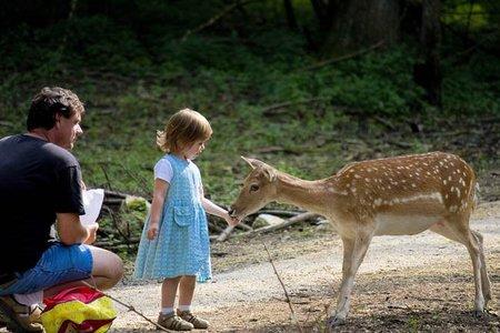 amigos-con-hijos2.jpg