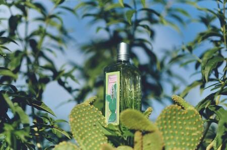 La nueva edición limitada del perfume unisex más vendido de L'Occitane es genial para escapar del calor abrasador