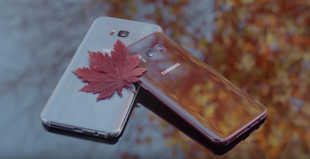 Samsung Galaxy S8 Burgundy Red 3