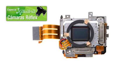 Los filtros antipolvo del sensor en las réflex