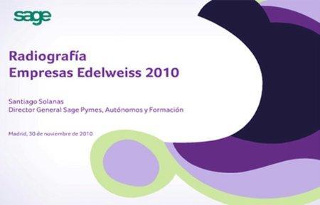 Radiografía de Empresas Edelweiss 2010