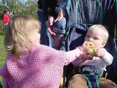Los bebés tienen sentido de justicia y altruismo con 15 meses