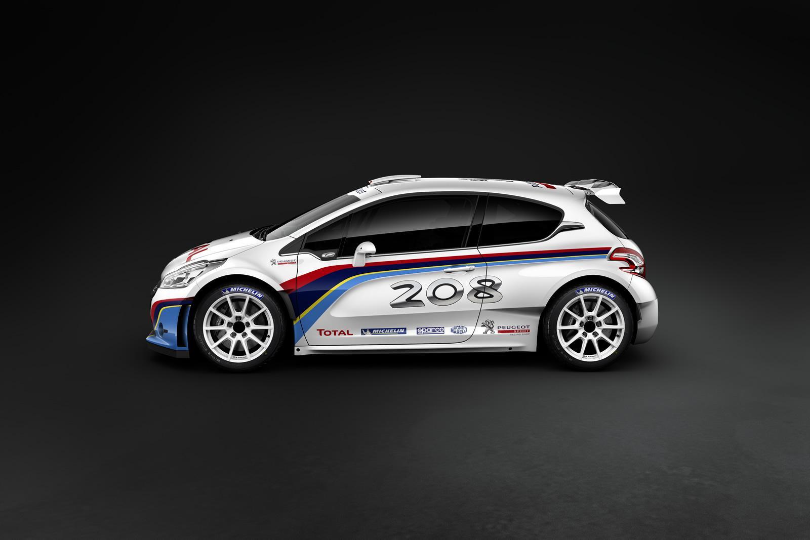 Foto de Peugeot 208 R5 (8/10)