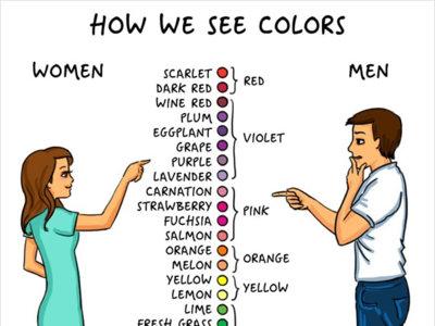 Diferencias (gráficas) entre un hombre y una mujer