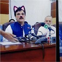 Cuando el filtro del gato se coló en el streaming oficial de una conferencia política