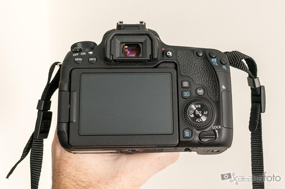 Canon77d 06644